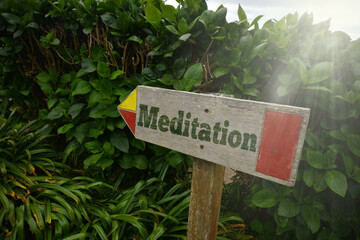 vintage old wooden signboard with text meditation near the green plants.