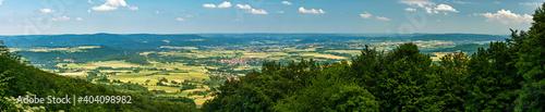 Fotografie, Obraz Scenic View Of Forest Against Sky