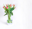 Spring composition with fresh pink tulips in a glass vase isolated bouquet.