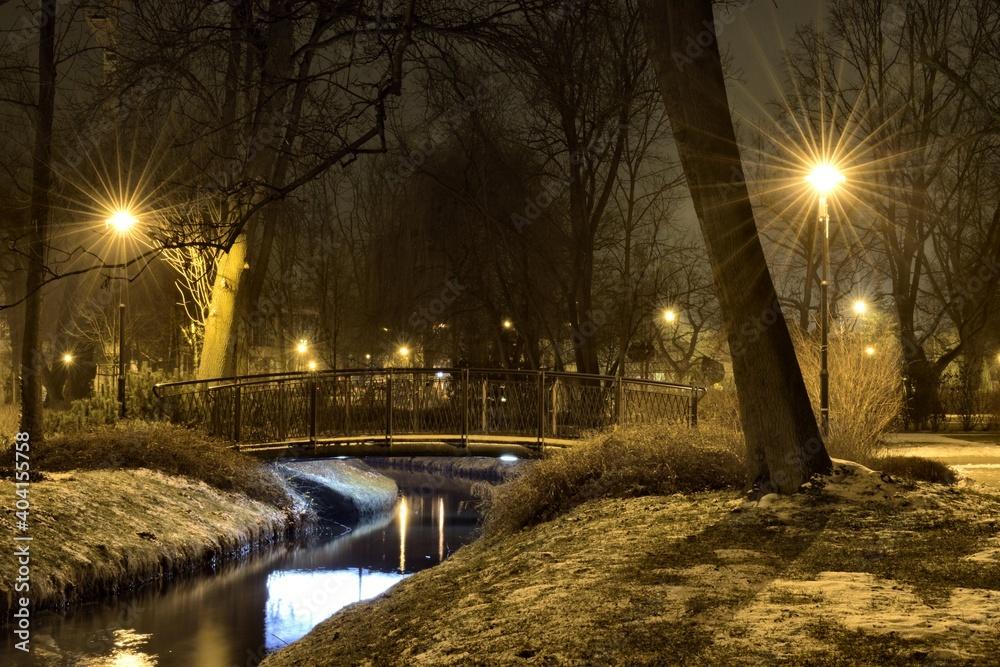 Fototapeta Illuminated Street Light By Bare Trees During Winter At Night