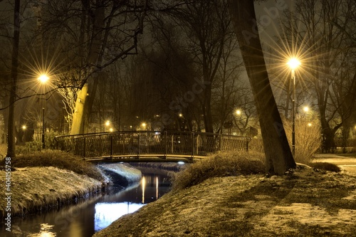 Illuminated Street Light By Bare Trees During Winter At Night