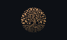 Natural Vector Tree Logo Illustration Nature Tree Golden Roots And Growth Design Template