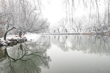 The Winter Scene Of Summer Palace Of Beijing