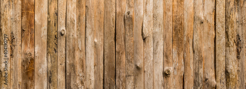 Obraz Brown wood paneling of eucalyptus or hardwood flooring with a natural patterned background. - fototapety do salonu