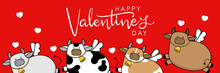 Happy Valentine's Day With Cute Cow Have Cupid Wings. 2021 The Year Of The Ox. Love Holidays Cartoon Character. -Vector
