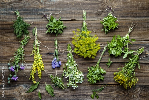 Fototapeta Assorted herbs from the garden on wooden table. Fresh herb on wood, top view obraz