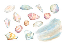 Watercolor Set Seashells And Blue Sandy Beach In Pastel Soft Colors Isolated On A White Background. Shells. Gray-beige Blurred Background. Hand-drawn Illustration