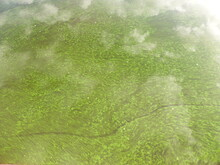 Algae And Clouds In The Volga River. And There's A Fog Over The River