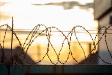 Barbed Wire On The Fence In The Early Morning. Background
