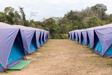 Blue Tents Lined Up At Doi Samoe Dao With In Sri Nan National Park Thailand