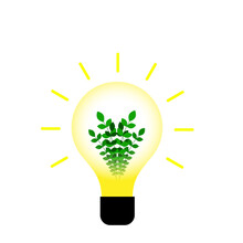 Plant Growing Inside The Light Bulb Energy Saving