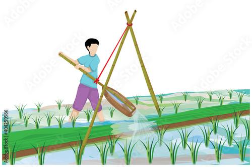 Fototapeta farmer work in paddy field vector design,long-handled sccop-shaped basket suspen