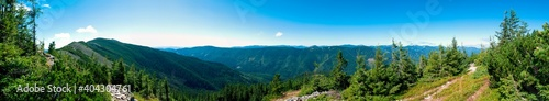 Fotografía beautiful panorama with alpine pine and mountains under blue sky