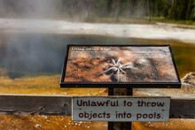 Close Up On Spider Displayed In Information Tourist Sign Living On The Edge In Yellowstone National Park In America