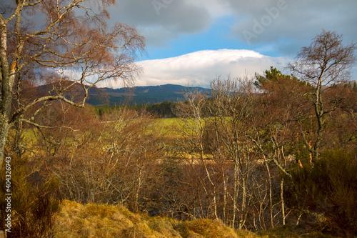 Foto Scottish rural landscape