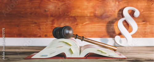 Gavel On Book Against German Paragraph Icon
