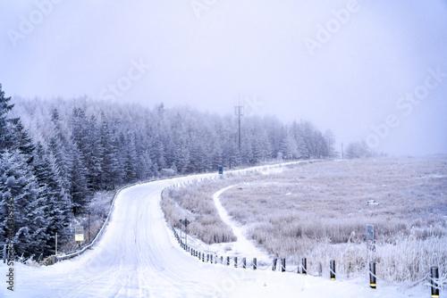 【長野県】ビーナスラインの冬景色