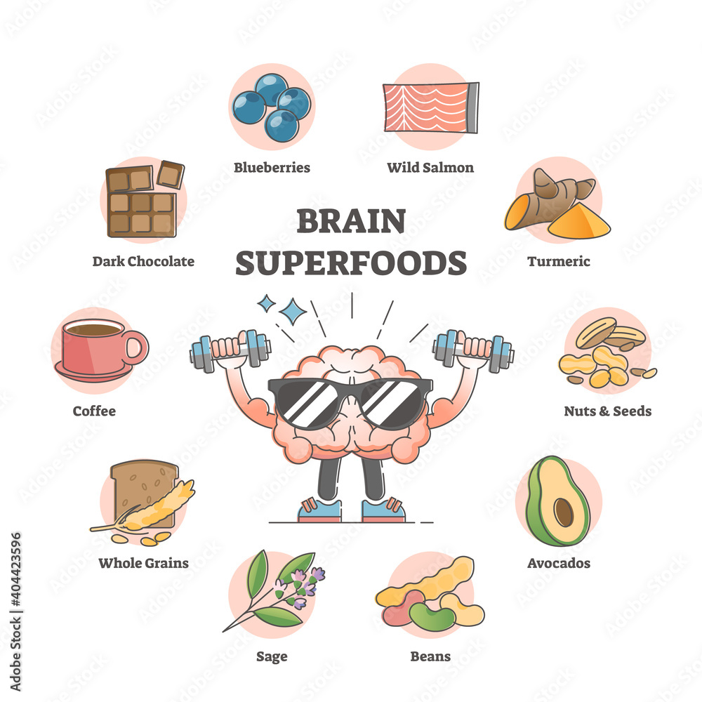 Fototapeta Brain superfoods as nutrition diet products to improve memory outline concept