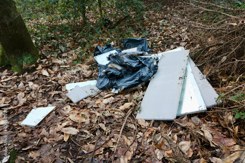Fotografija Random rubbish comprising black plastic sack and detritus dumped in woodland