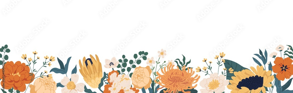 Fototapeta Gorgeous floral backdrop with border of blooming autumn flowers and leaves. Design of horizontal banner with elegant fall plants isolated on white background. Colorful flat vector illustration