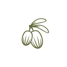 Shea Nut Green Icon. Vitellaria Beauty And Cosmetics Oil.