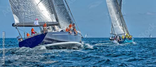 Sailing yacht regatta. Yachting. Sailing © Alvov