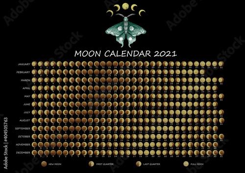 Fototapeta Lunar calendar 2021
