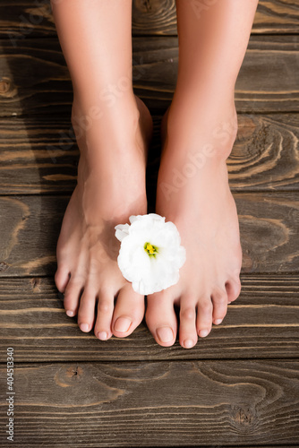Obraz top view of groomed female feet with shiny pink nails, and white eustoma flower on brown wooden surface - fototapety do salonu