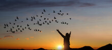 Girl Raise Hand Up On Sunset With Birds Flying In Sky.