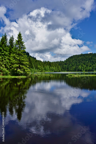 Obraz Scenic View Of Lake By Trees Against Sky - fototapety do salonu