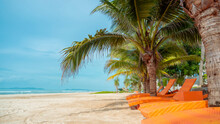 Orange Beach Chairs And Coconut Trees. A Summer Travel Destination.