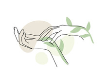 Female Hands With Branch Leaf And Abstract Background. Background For Cosmetics, Packaging, Products