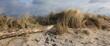 Dünengras, Düne, Sand, Strand, Strandgut, Banner