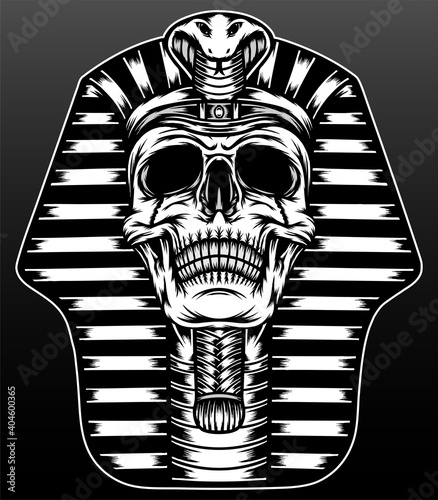 Fotografie, Obraz King pharaoh skull illustration