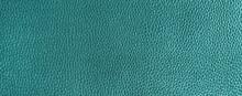Beautiful Turquoise Reptile Style Skin Background