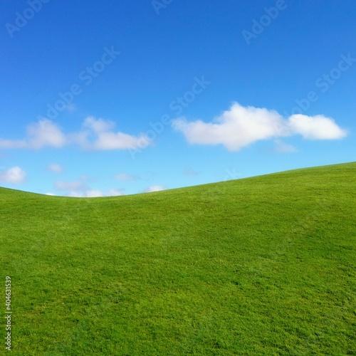 Fototapeta Scenic View Of Grass Against Sky