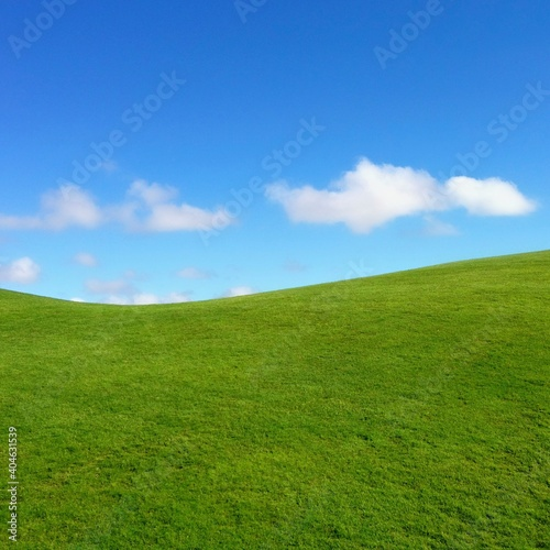 фотография Scenic View Of Grass Against Sky