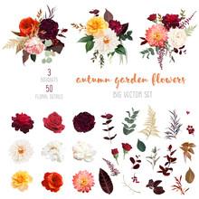 Autumn Garden Vector Design Big Set
