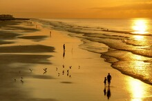 Silhouette Of People At Beach During Sunset