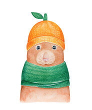 Water Color Illustration Of Cute Little Baby Mouse Wearing Funny Fruit Hat And Green Scarf. Hand Painted Watercolour Graphic Drawing, Cut Out Clip Art Element For Design, Sticker, Print, Poster, Card.