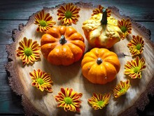 High Angle View Of Various Squashes With Gazania Flowers On Wooden Table