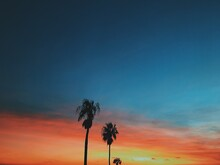 Low Angle View Of Silhouette Coconut Palm Trees Against Sky During Sunset
