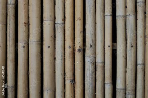 Fotografia Full Frame Shot Of Bamboos