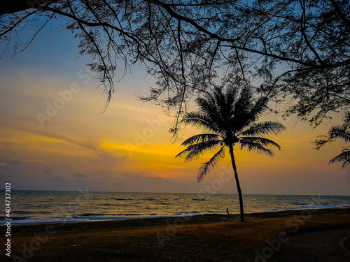 Fototapety, obrazy: Silhouette Tree On Beach Against Sky During Sunset