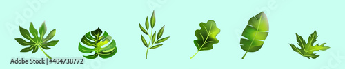 set of green leaves cartoon icon design template with various models Wallpaper Mural