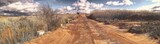 Fototapeta Las - Panoramic Shot Of Footpath On Field Against Sky