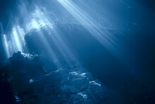 Rays Of Light Under Water, Abstract Marine Background Nature Landscape Rays Blurred