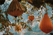 Low Angle View Of Lanterns Hanging On Tree By Sea