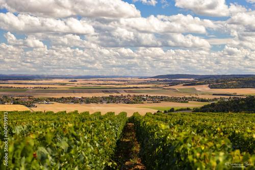Fototapeta La plaine à partir des vignes de Montgueux, à côté de Troyes.