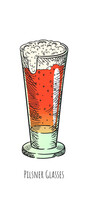 Vector Beer In Pilsner Glasses. Hand Drawn Isolated Illustration